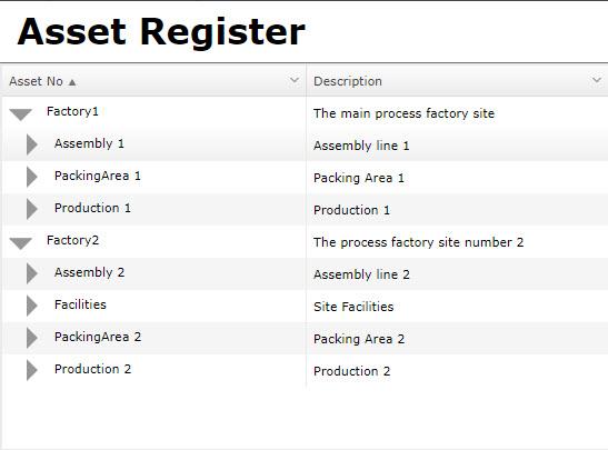 Unregionalised Asset Register