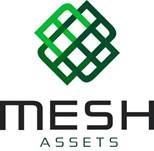 Mesh Assets
