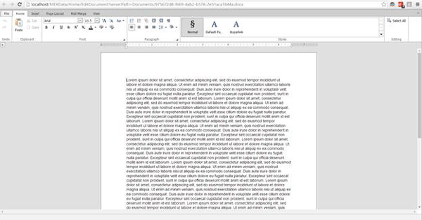 Word File Example MEX