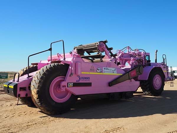 Dunns Pink Scrapper