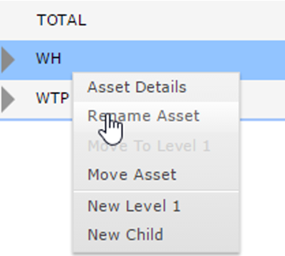 RMC Rename Asset