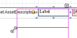 Resizing a Label in MEX