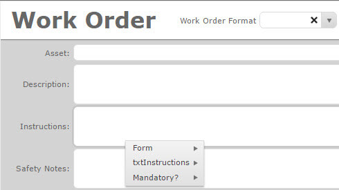 Security Form OPtions