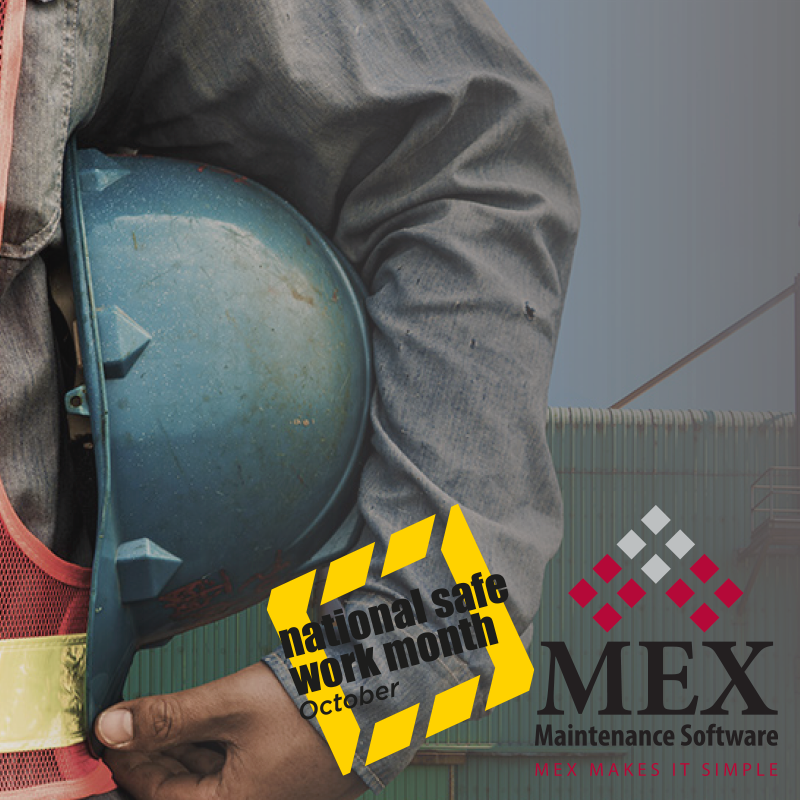 Workplace Health and Safety and MEX