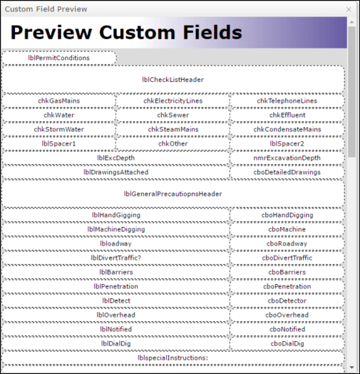 Preview custom field